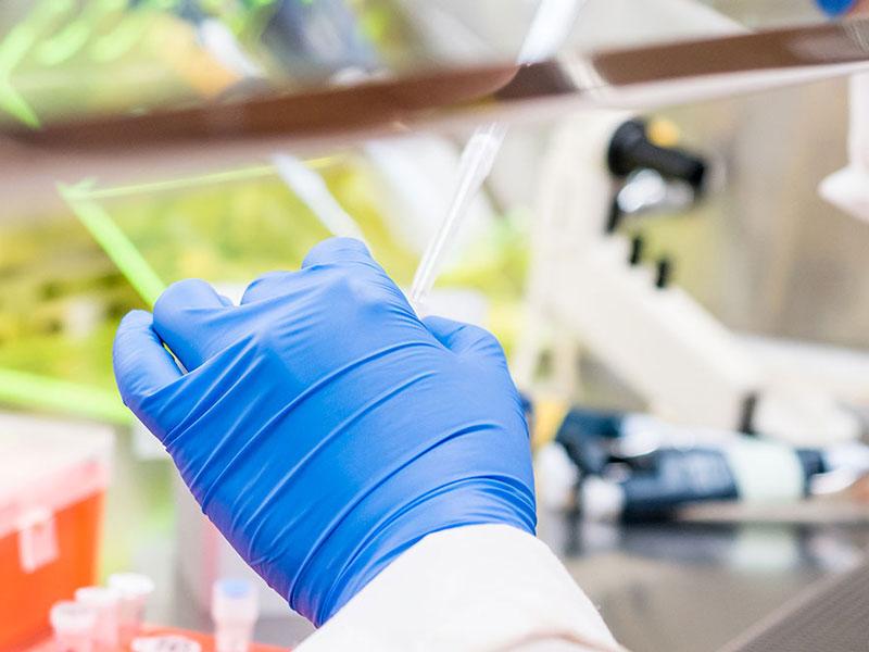 analisi campioni rifiuti cesena
